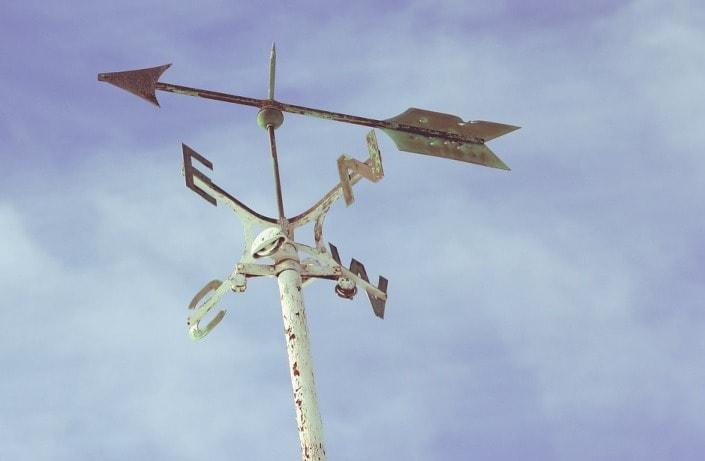 Стратегия ставок противоход – можно ли эффективно применять?