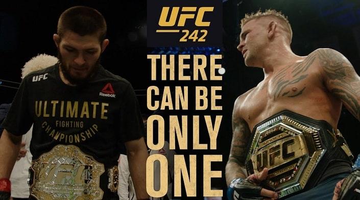 Дайджест UFC 242