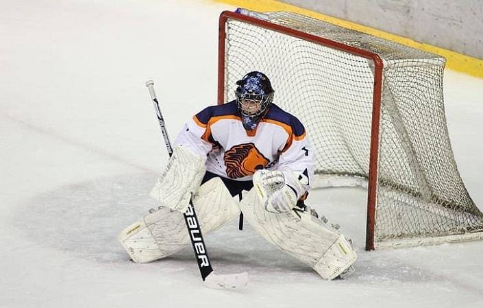 Доту онлайн двойной шанс в ставках на хоккей смотреть онлайн стратегии